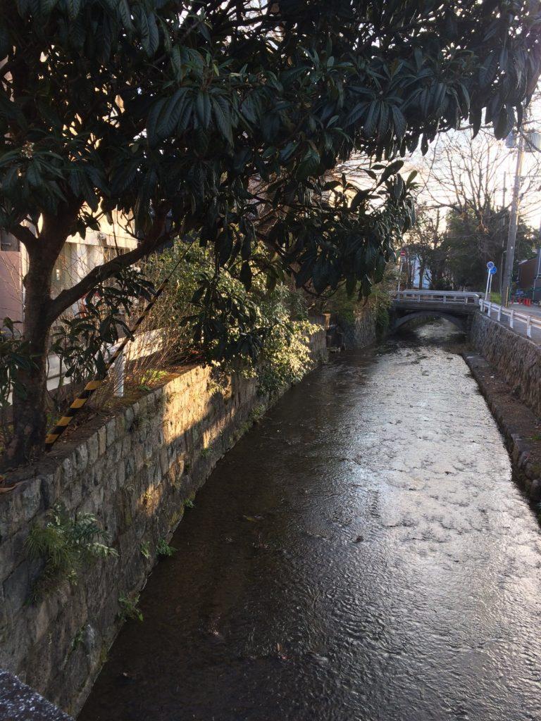 京都カフェ efish付近高瀬川